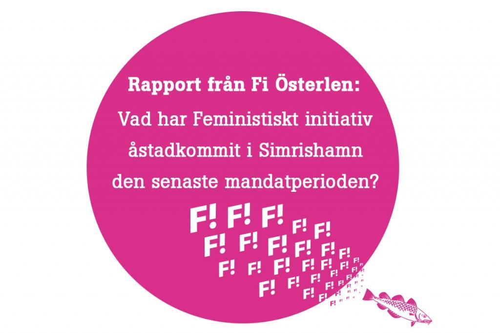 BILD_rapport Fi
